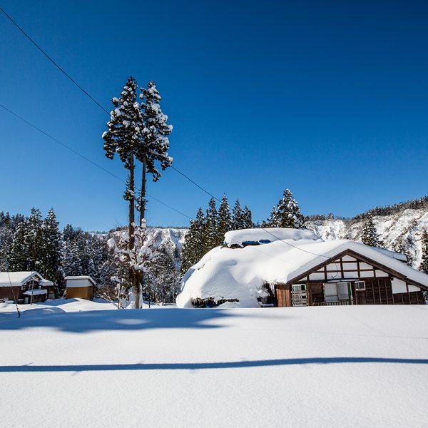 冬景色 昼